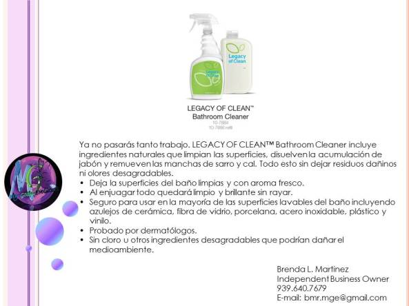 Legacy Of Clean By Amway My Goals Evolution